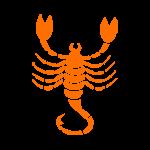 Todays's Horoscope For Scorpio